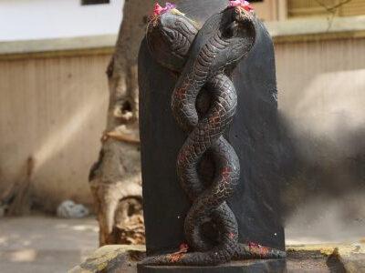 Kala Sarpa Puja e1592586810248