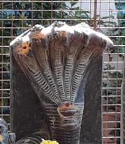 Naga Sarpa Puja Original
